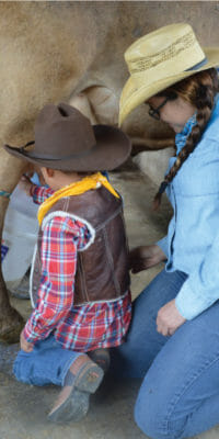 Niño ordeñando vaca durante paseo escolar de en Rancho Guacatay