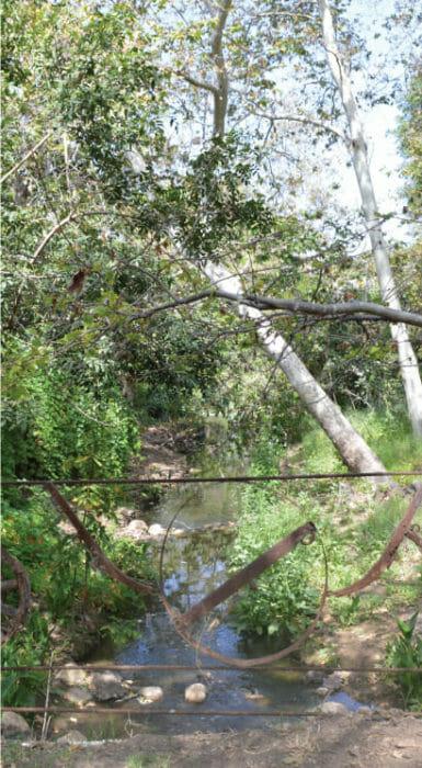 Rio Rancho Guacatay